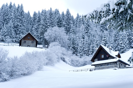 Timber Houses In Snowy Landscape