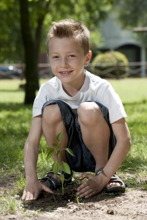 Little boy planting photo