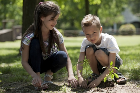 Children planting a new tree. Concept: new lifew, environmental conservation Stock Photo - 15674267