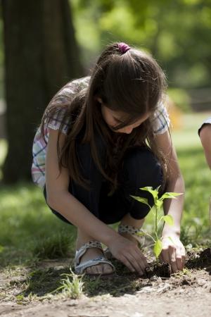 Kinder pflanzen einen neuen Baum. Konzept: neue lifew, Umweltschutz