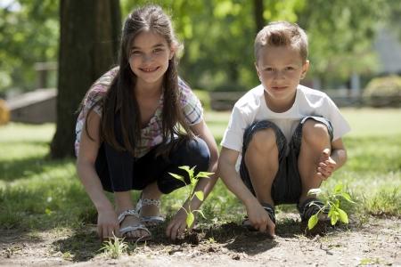 Kinderen planten van een nieuwe boom. Concept: nieuwe lifew, behoud van het milieu Stockfoto