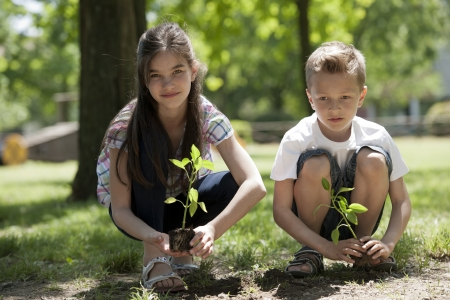 Children planting a new tree. Concept: new lifew, environmental conservation photo