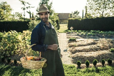 Werknemer met mand van biologische groenten, opgepikt uit een synergetische moestuin