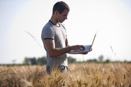 agronomist: Agronomist analysing wheat market using laptop