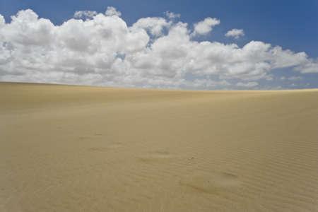 Patterns and marks on sand at Corralejo Dunes, in Fuerteventura island Banco de Imagens