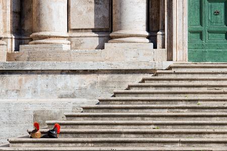 cascos romanos: Cascos antigua romana en pasos Foto de archivo