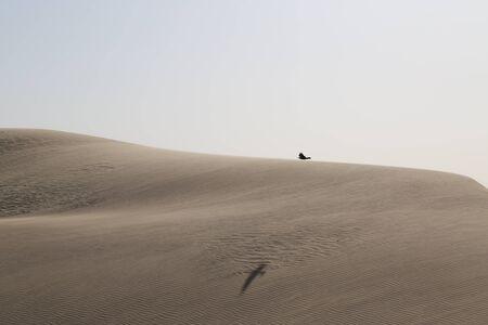 Dunes in the Wahiba Desert, Oman