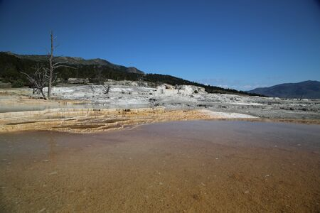 Mammoth Spring, one of the most beautiful geothermal areas of Yellowstone park