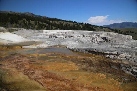 Mammoth Spring, Yellowstone National Park