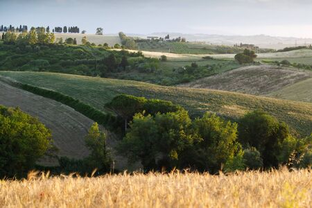 Tuscan countryside. The rural landscapes and unspoiled countryside that have made Tuscany famous in the world and that make it a unique territory
