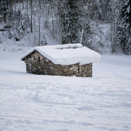 Agricultural shelter under the snow
