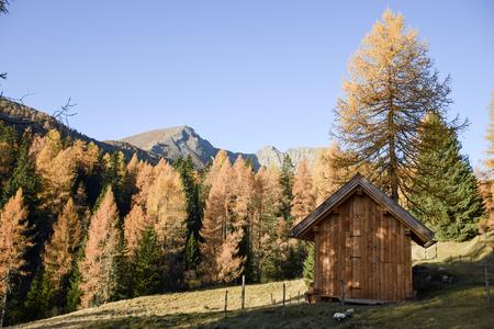 Autumn cabin Imagens