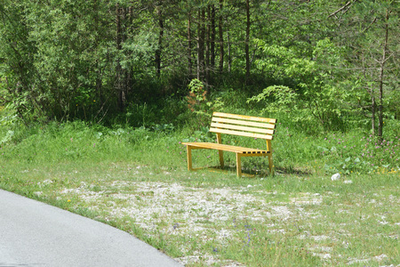 The yellow bench in the park