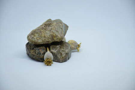 Decoration with stones and dried flowers Imagens