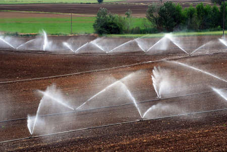 irrigation of agricultural field
