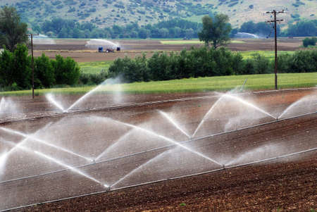 agriculture industry: irrigation of agricultural field
