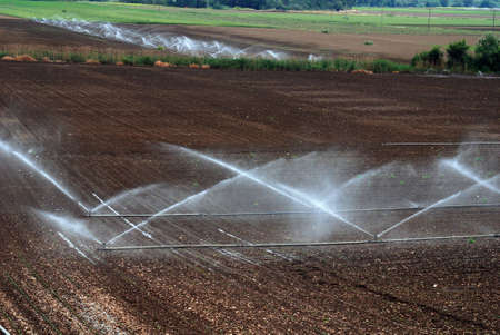 irrigation of agricultural field  Stock Photo - 8034777
