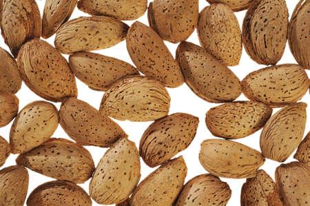 almonds on a white background photo