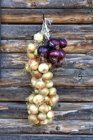Onion braid photo
