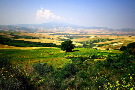 val d'orcia: The guardian of the valley in tuscany. Val dorcia