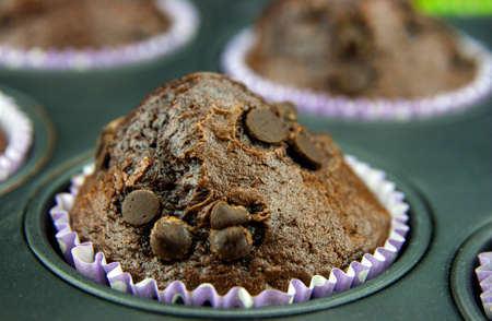 Freshly baked muffins with drops of chocolate photo