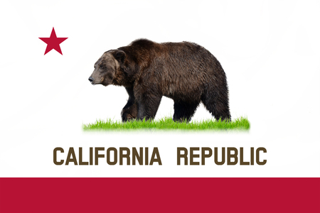 real state: California state national flag with real bear.
