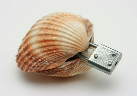 chastity: Shell with padlock