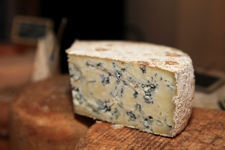 penicillium: French musty cheese on sale