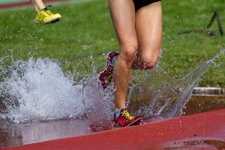 steeplechase: steeplechase race