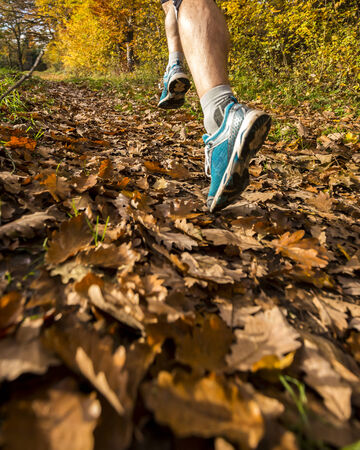 jogging in the forest in autumn