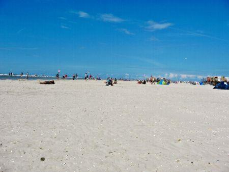 encouraged: encouraged beach