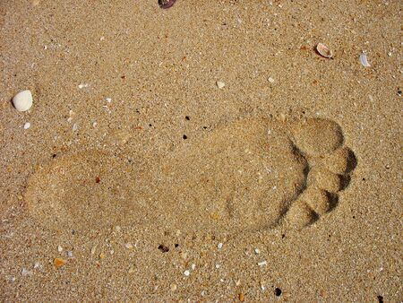 Footprints left by the beach Stock Photo - 5303807