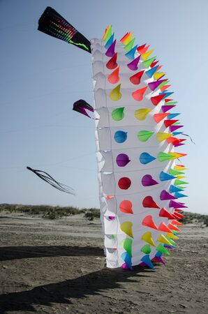 seashores: Light wind toy and kites