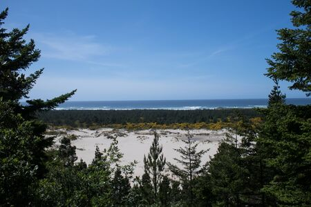 pacific ocean: Sand dunes and Pacific Ocean