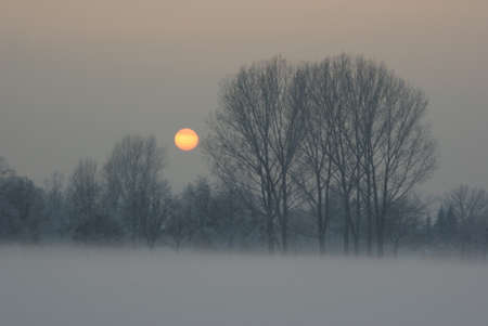icy: Icy sunset - Saxony, Germany Stock Photo