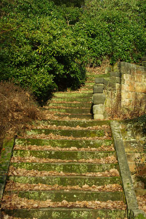 transience: Old stairs of stones in a romantic park