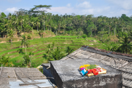 rice terrace: Religious Offering at rice terrace in Ubud, Indonesia Stock Photo