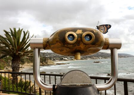 beach butterfly: Coin operated binoculars overlooking Laguna Beach Main Beach with a monarch butterfly on top