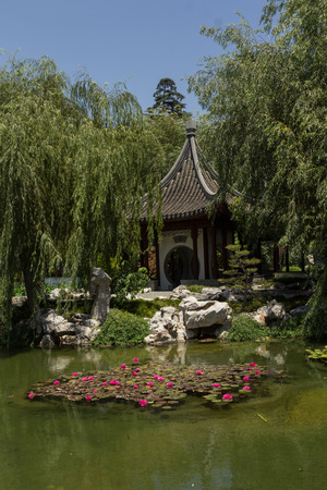 Chinese Garden At The Huntington Botanical Gardens In Southern California  Photo