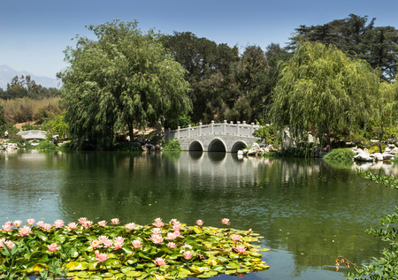 botanical gardens: Chinese Garden at the Huntington Botanical Gardens in Southern California