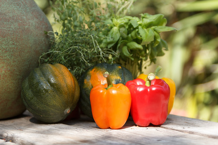 Red, yellow and orange peppers on a rustic table on a blurred background of herbs oregano, rosemary, thyme and basal