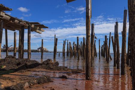 cape cod home: Provincetown, Massachusetts, Cape Cod beach with a broken down pier.