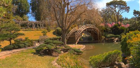 southern california: Japanese garden at the Huntington Botanical Garden with a pond and bridge in Southern California, United States.