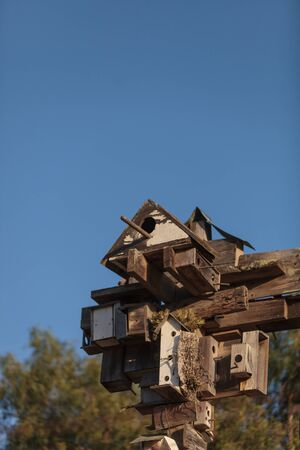 reside: A cluster of birdhouses reside over a garden in Southern California.