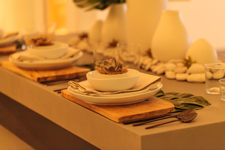 candleholders: Rustic desert place setting with white candleholders and succulent plant on a country patio in summer.