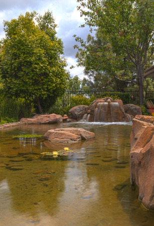orange county: Plant life, koi fish and a waterfall in a pond in Southern California in spring. Stock Photo