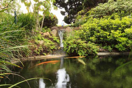 sanshoku: Relaxing, zen like pond with a waterfall, koi fish and tropical plants. Stock Photo