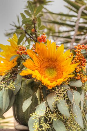 sprigs: Holiday flower bouquet inside a gourd vase with red berries, green leaves and sprigs, and sunflowers on a rustic wood farm house background. Stock Photo