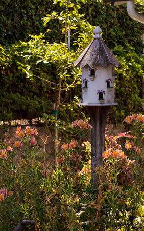Fancy white birdhouse with custom painting on a pole in a botanical garden in summer