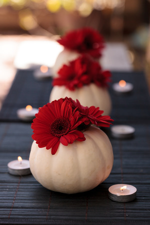 gerbera daisies: Red gerbera daisies in carved white Casper pumpkins on a black table setting with white candles at the holidays.